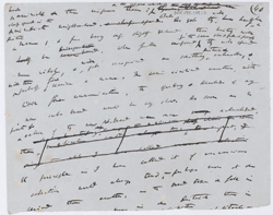 A page from Darwin's manuscript On the Origin of Species, the foundation text of evolutionary biology. (Cambridge University Library, DAR 185.109.f6r)