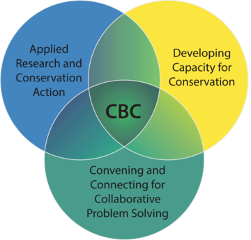 The CBC is at the intersection of applied research and conservation action, developing capacity for conservation, and convening and connecting for collective problem solving.