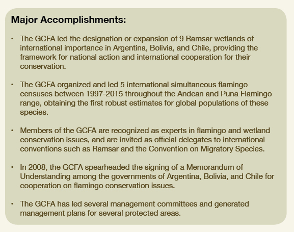 CBC flamingos in americas project accomplishments