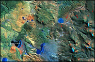 Flamingo satellite image