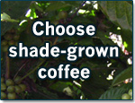Choose-shade-grown-coffee
