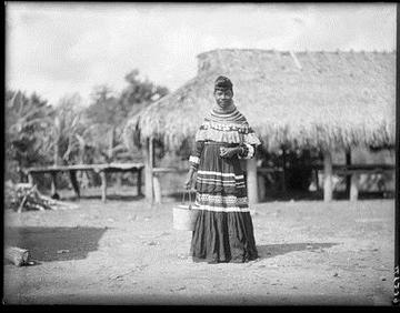 AMNH Image 48239, Seminole woman, the Everglades, Florida, 1907