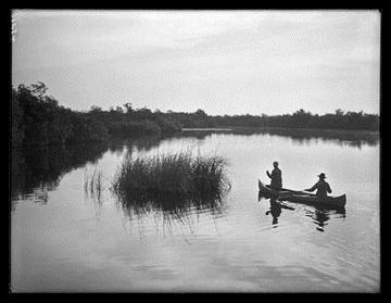 AMNH Image 48266, Canoeing near sawgrass key, Harney River, Florida, 1906