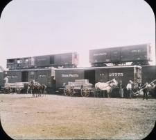 Shipment of dinosaur bones transported by wagon to be loaded onto Union Pacific railroad cars for journey to New York,1898. (AMNH image no. 5417)