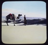 Guide with camel, Central Asiatic Expedition, Gobi Desert, Mongolia. From a hand-colored lantern slide. (AMNH image no. 6433)