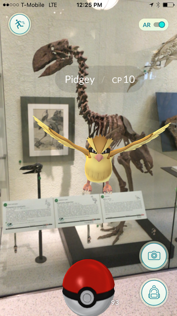 Pidgey in fossil hall