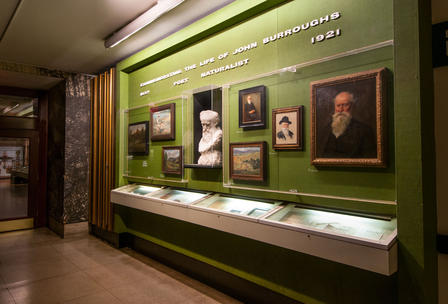 View of the John Burroughs corridor at the Museum, with Burroughs bust and portraits.