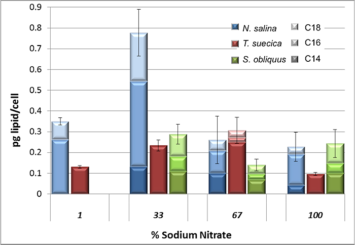 Figure 5: Lipid content of cultures grown during nitrogen limitation experimentation. Lipid classes were determined based on separation and molecular weight assignment by GC-MS, and combined for overall lipid content. Shaded areas of the bars represent different carbon length chains. Stressed cultures show increases in lipid content (except in Scenedesmus, where the overall effect is unclear). In Tetraselmis, less than 67% sodium nitrate causes lipid content to begin to decrease again—the same is true for Nannochloropsis when nitrate levels fall below 33%. Cultures grown in 1% nitrate were difficult to analyze as they had low biomass. The greatest lipid content was achieved by N. salina at 33% nitrate.
