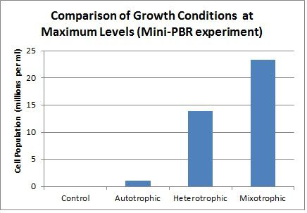 mini pbr cell population comparision