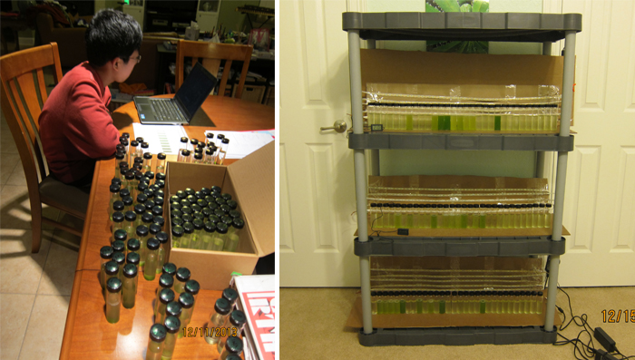 Andy examines the 120 vials (left): The vial experiment (right)
