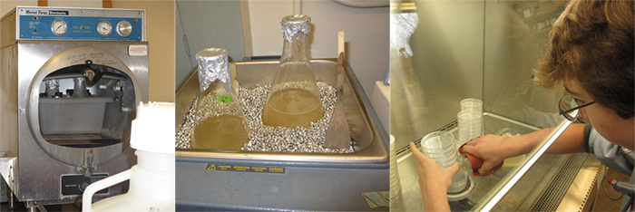 Photos of an autoclave, two glass flasks in a bead bath, and experimenter pouring the agar into petri dishes under the laminar flow hood