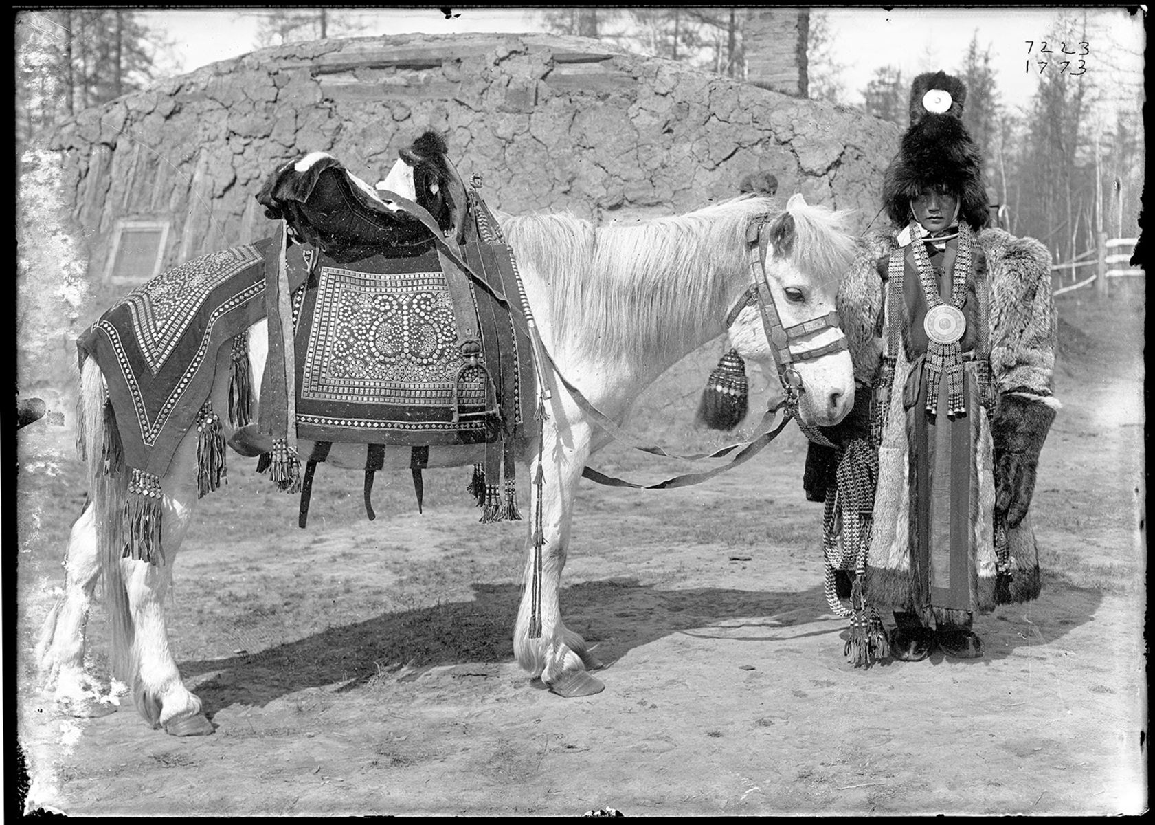 Woman draped in heavy, ornate robes and headgear, stands next to a horse with elaborately decorated bridle, saddle and blanket.