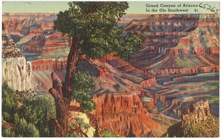 nabokov-grand-canyon-postcard