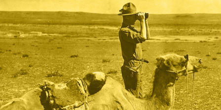 Andrews stands next to camel and looks through binoculars at the desert landscape.