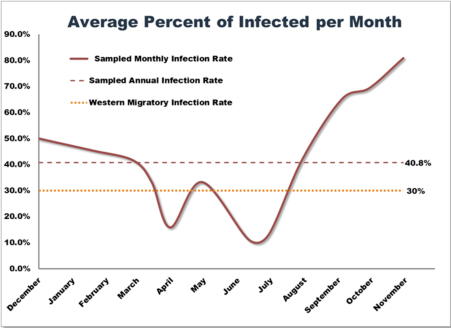 Figure 10: Average Infected Per Month: Comparing Sample Population to Migrant Population