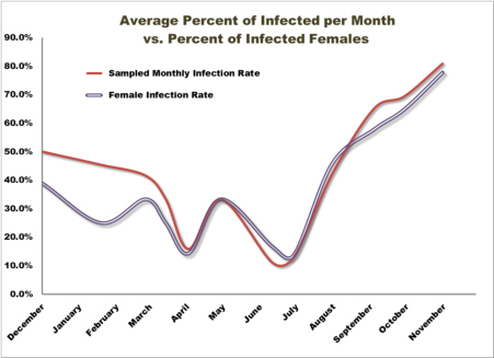 Figure 11: Average Infected Per Month as Influenced by Monthly Female Infection Rates