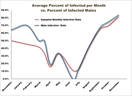 Figure 12: Average Infected Per Month as Influenced by Monthly Male Infection Rates