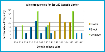 Figure 8: Percentages of allele frequency for the Sfo-262 genetic marker. Brook trout alleles were 320–356 bp and 392–412 bp; brown trout alleles were 356–375 bp. Unknown trout had alleles that matched alleles from brook trout (338 and 350 bp) and an allele from brown trout (375 bp).