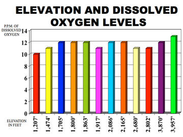 dissolved oxygen essay Oxygen and aerobic respiration essay significantly more oxygen than nongerminating, or heat killed, peas, as anticipated by the students performing the lab.