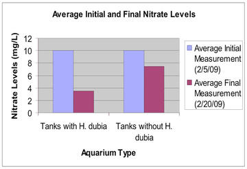 This graph demonstrates the considerable difference between the initial and final nitrate measurements for tanks containing H. dubia and those which did not. I expected the average final measurement to remain the same for both tanks without H. dubia. However, given the presence of the algae bloom, I would speculate that algae might have removed nitrate from the water and lowered the average final nitrate measurement.