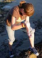 Allison taking a sample
