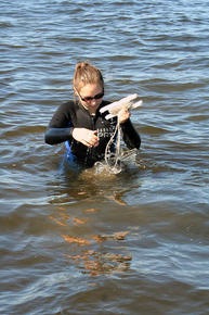 Anastasia collecting samples in Barnegat Bay, New Jersey.