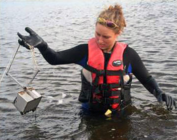 Collecting a sediment sample for benthic study with field grabber.