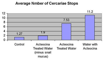Average number of Cercariae stops.