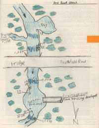 Sketch of Bear Brook