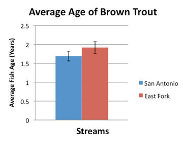 The average age of brown trout was no significantly different between the two streams. Error bars are at the 75% confidence level.
