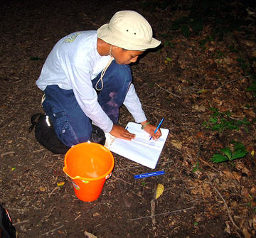 Recording toad data in journal at Hogback Preserve.