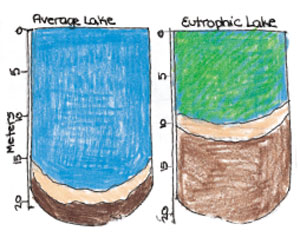 Comparing the Depths of Lakes
