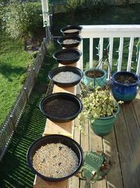 Figure 10: Six containers each filled with a different kind of seed.