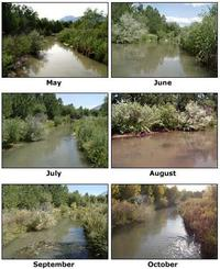 Views of a river from May, June, July, August, September, and October.