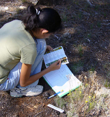 Viola consults a booklet on flora identification.