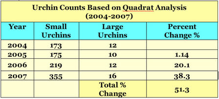 Table 2: Changes in four-year urchin count on Zaki's fringing Red Sea coral reef show an overall 51% increase in the urchin population since 2004.