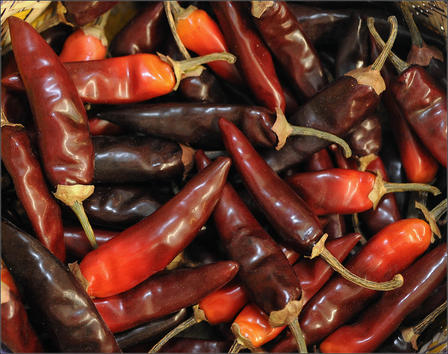 Chile Peppers OGK