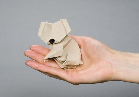 origami classes at the american museum of natural history