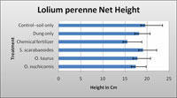 Bar chart of the net growth heights of the Lolium perenne grass under various soil treatment conditions.