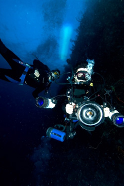 John Sparks and David Gruber in diving gear using underwater cameras to study bioluminescent organisms