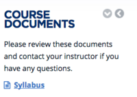 course documents: syllabus