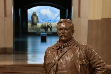 The Theodore Roosevelt Memorial Fund Theodore Roosevelt Grant